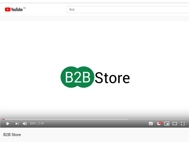 B2B Store B2B Store Introdiction Video